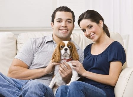 couple renter dog pets