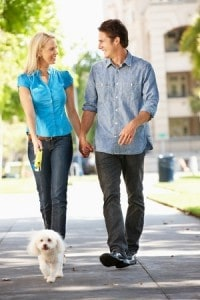 couple walking dog city