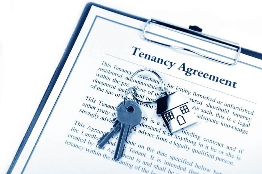 california tenant rights